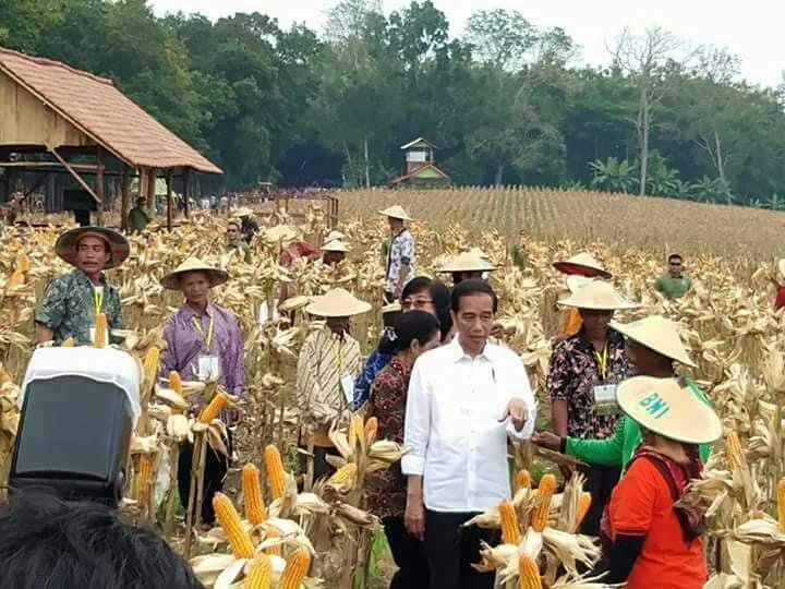 Album : Presiden di Tuban